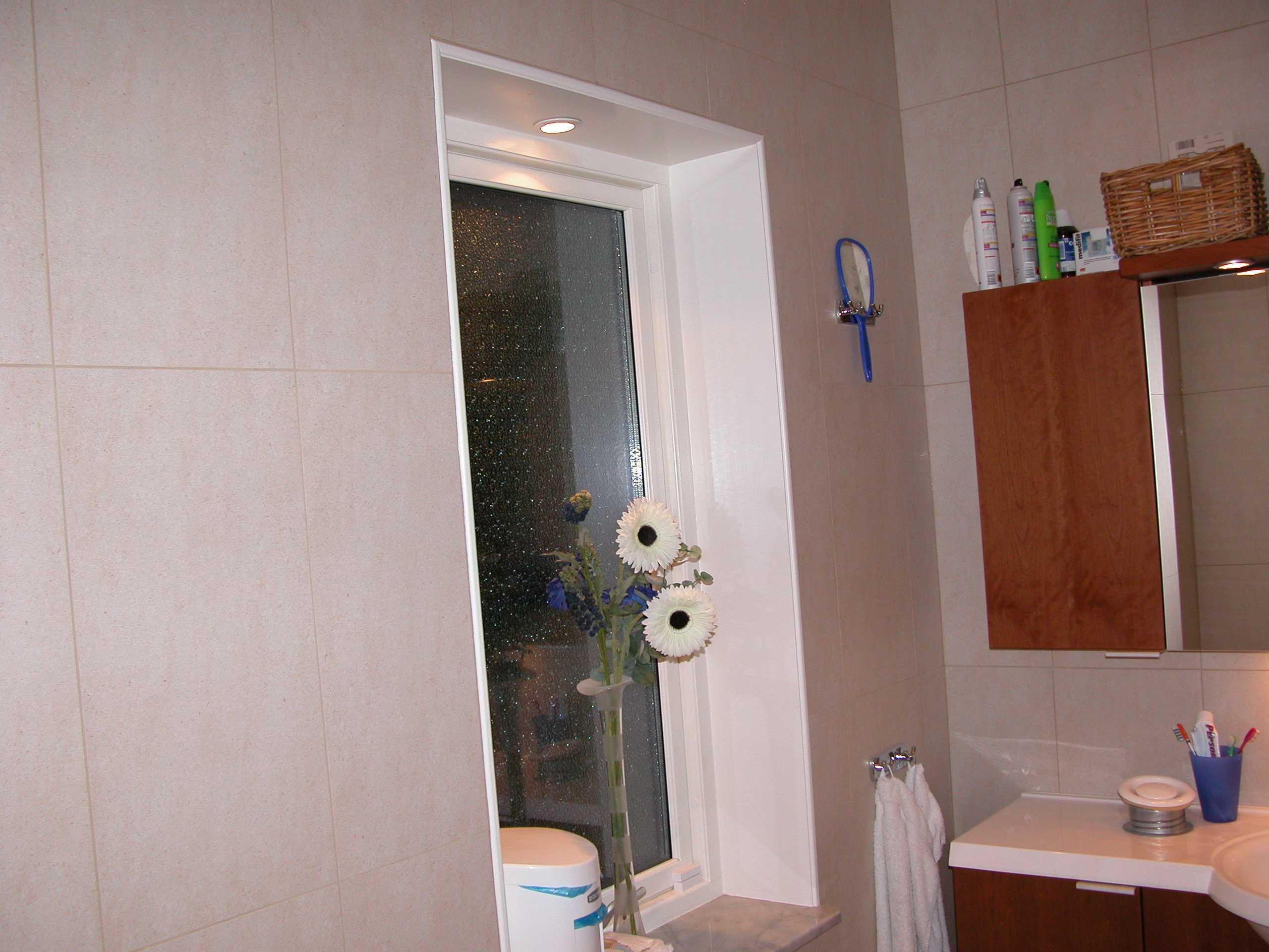 Krukväxt badrum utan fönster ~ xellen.com